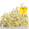 Chamomile tea — Stock Photo #26942213