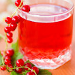 Stock Photo: Compote of red currants