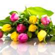Stock Photo: Yellow and pink tulips isolated