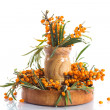 Sea-buckthorn — Stock Photo #29793565