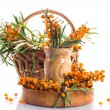 Sea-buckthorn — Stock Photo #29793783