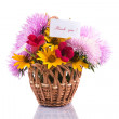 Bouquet of asters — Stock Photo #30332991