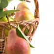 Ripe pears in a basket — Stock Photo