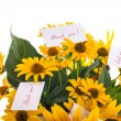 Bouquet of sunflowers and gratitude — Stock Photo
