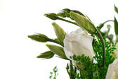 Bouquet of eustoma flowers — Stock Photo