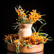 Sea-buckthorn — Stock Photo #30676915
