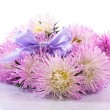 Aster bouquet — Stock Photo #30850713