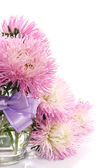 Aster bouquet — Stock Photo