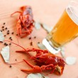 Boiled crawfish with beer — Stock Photo #31535897