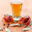 Boiled crawfish with beer — Stock Photo #31539543