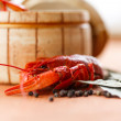 Close up of boiled crawfish — Stock Photo #31592999