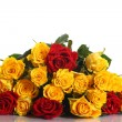 Yellow and red roses   — Stock Photo