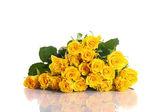 žlutá růže — Stock fotografie