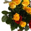 Yellow and red roses — Stock Photo #33331331