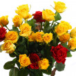 Yellow and red roses — Stock Photo #33331341