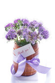 Bouquet of flowers with blue phacelia — Stok fotoğraf