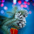 Christmas fir cones — Stock Photo