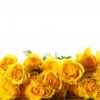Yellow roses — Stock Photo #40919411