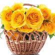 Beautiful yellow rose — Stock Photo #41347733