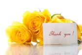 美丽的黄玫瑰 — 图库照片