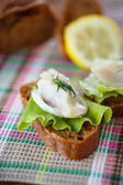 Sandwich salted herring and lettuce — Stockfoto