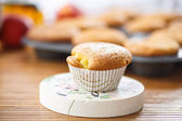 Honey muffins — Stock Photo