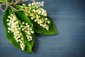 Bouquet of lilies of the valley — Stock Photo