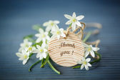 Beautiful bouquet of white flowers  — Stock Photo