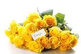 Belle rose jaune — Photo