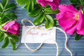 Flores rosa mosqueta — Foto de Stock