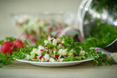 Salad with radishes and cucumber — Stock Photo