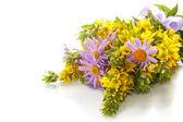 Bouquet de marguerites et de salicaire d'été — Photo
