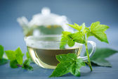 Tea with currant leaves — Stock Photo