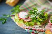 Sandwich with lettuce, ham and radish — Stock Photo