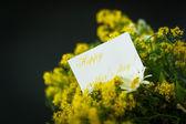 Ramo de flores silvestres para mamá — Foto de Stock