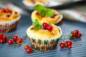 Cheese muffins with red currants — Stock Photo