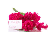 букет роз — Стоковое фото