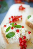 Sandwich with cheese and red currants — Photo
