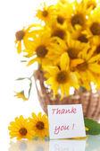 Daisy bouquet — Stock Photo