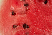 Closeup of watermelon — Stock Photo