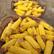 Baskets with corn cobs — Stock Photo #35825747