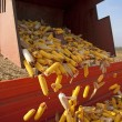 Dumping corn cobs — Stock Photo #35830819