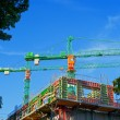 Construction cranes — Stock Photo #50369321