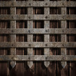 Medieval castle wall or metal gate background — Stock Photo