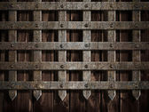 Medieval castle wall or metal gate background — Stock fotografie