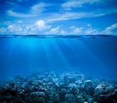 Vista de fundo marinho subaquático de recifes de corais com horizonte e água de superfície — Foto Stock