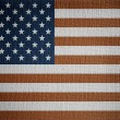 USA flag on white canvas — Stock Photo