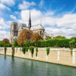 Notre Dame de Paris, France landmark. Seine river view. — Stock Photo