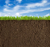 Soil, grass and sky background — Stock Photo