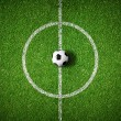 Soccer field center and ball top view background — Stock Photo #24601083